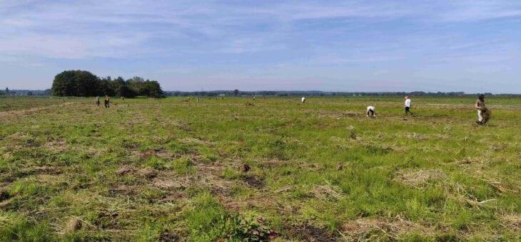 Aankoop 49 hectare natuur door Mooi Binnenveld